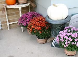 getting ready for fall crafting fun projects with pumpkins, mums, burlap, indian corn and doing a front porch home decor makeover