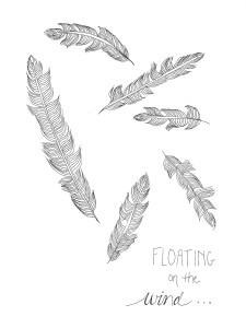 feathers coloring sheet download